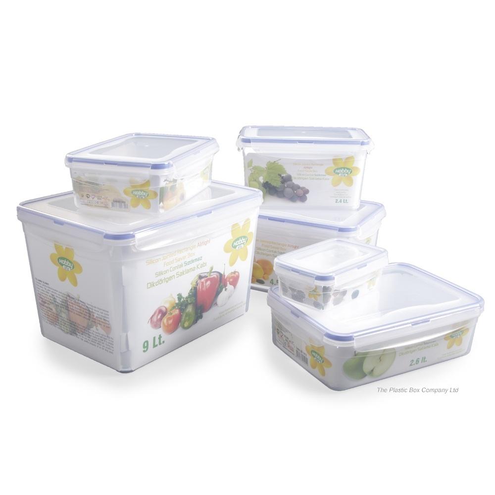 2 4lt Plastic Food Box With Airtight Lid Plastic Food