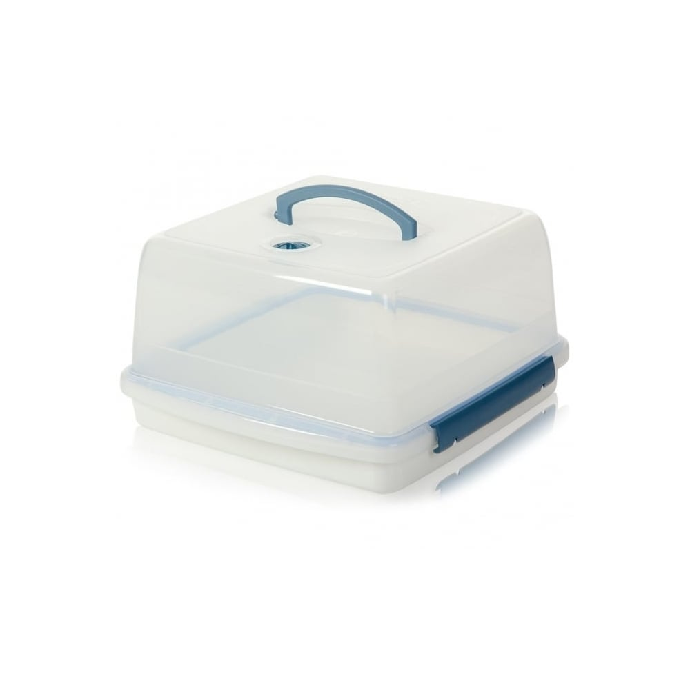 Buy Large Plastic Cake Box for 11 inch or 28cm Round or Square