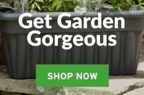 Get garden Gorgeous