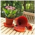 "Plastic Saucer for the 31cm (12.5"") Garden Plastic Pot"